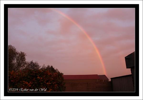 Zonsondergang-12-11-2014-001