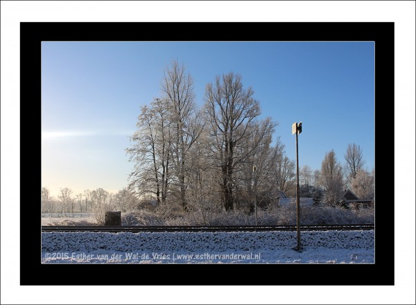 Sneeuw-2015-012