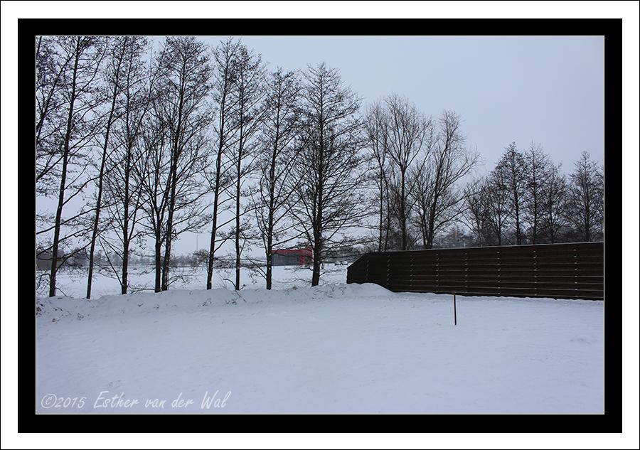Eerste sneeuw 2015