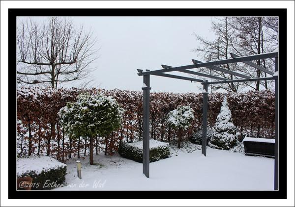 Sneeuw-23-01-2015-05