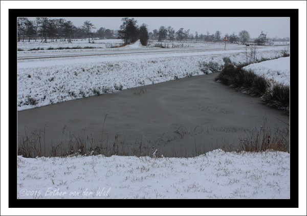 Sneeuw-23-01-2015-07