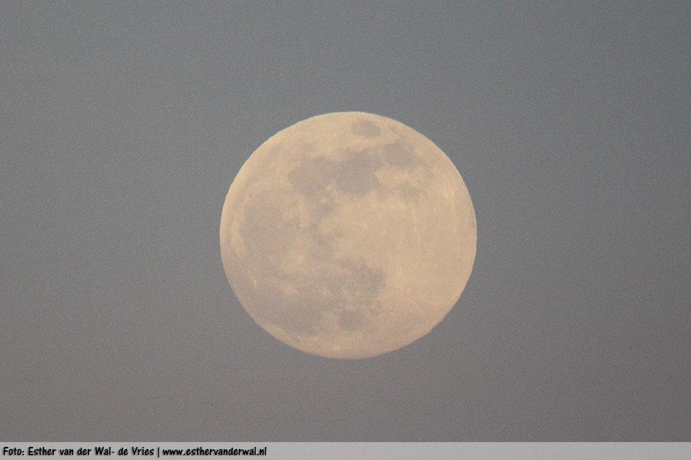 Zon & Maan